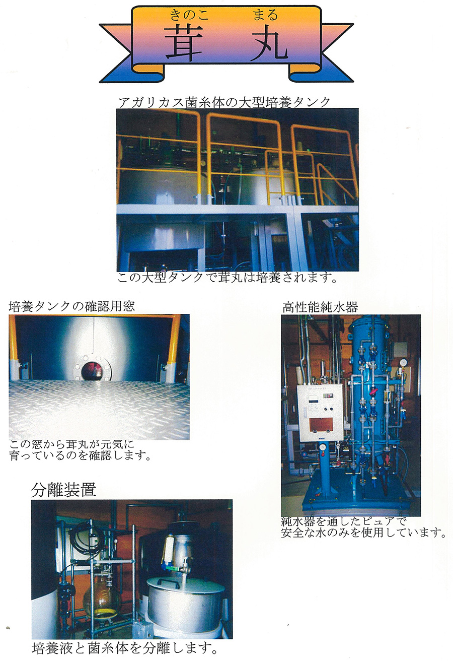 scan-004